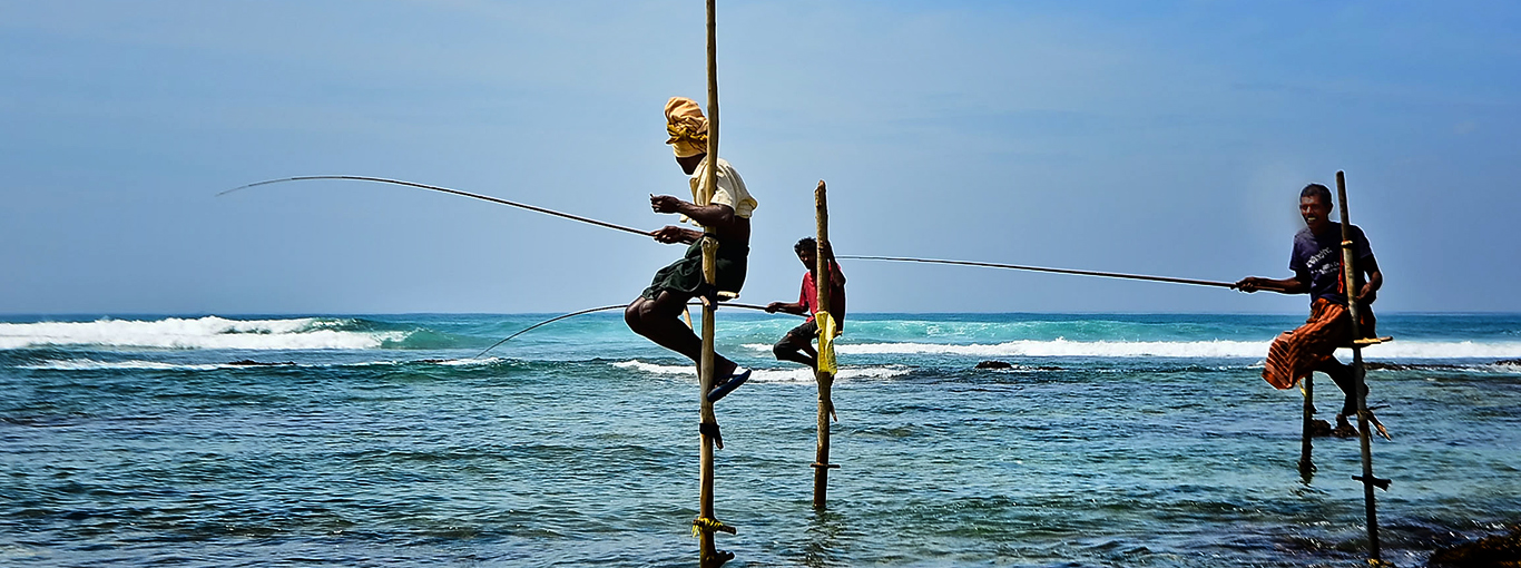Sri Lanka Traditional Fishing - Stilt Fishing